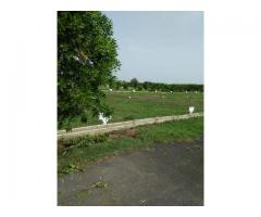 Open Plots in Kanchikacherla - Sai Brundavanam